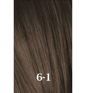 SC IR 6-1 DARK BLONDE CENDRE