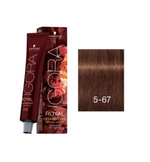 SC OP 5-67 LIGHT BROWN CHOCOLATE COPPER (ROYAL RUSSET)