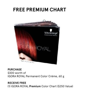SC IR FREE PREMIUM CHART W/$300 OF IR/ABS/HL/FL/C10