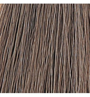 WE COLOR CHARM 246 (5A) LIGHT ASH BROWN