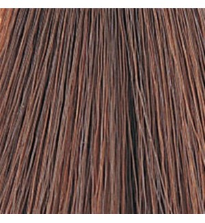 WE COLOR CHARM 356 (4R) CINNAMON BROWN