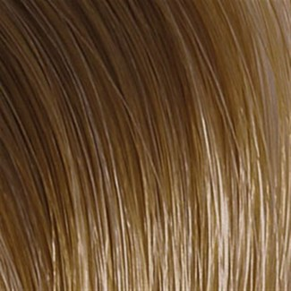 WE COLOR CHARM 6NW DARK NATURAL WARM BLONDE
