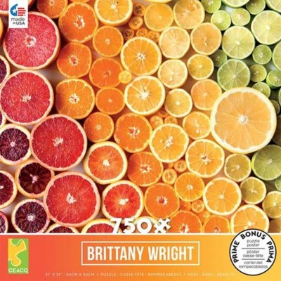 BRITTANY WRIGHT 750PC ASST (6)