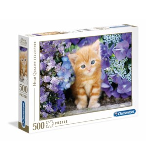 500PC HQC -GATTINO ROSSO GINGER CAT IN FLOWERS (2) ML
