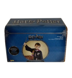 HARRY POTTER TRUNK (4)