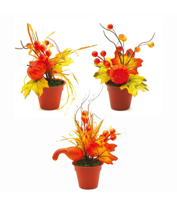 thxgiving potted plant 48/144