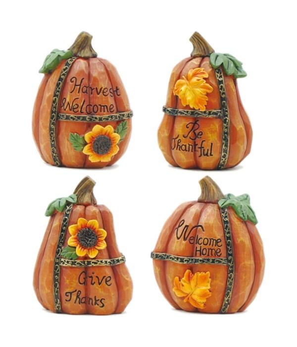 harvest pumpkin deco 24/48s