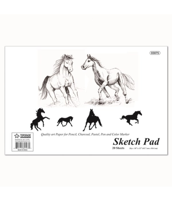 "sketch pad 18x12""/20ct 48s"
