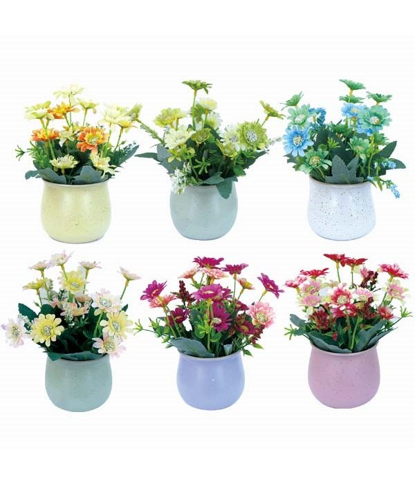potted flower astd clr 12/60s
