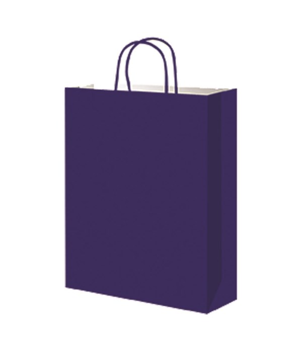 paper loot bag dk blue 12/60s