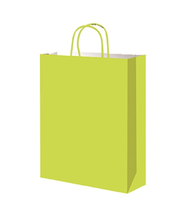 paper loot bag lime 12/60s