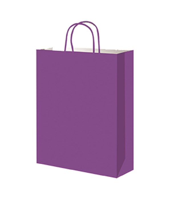 paper loot bag puple 12/60s