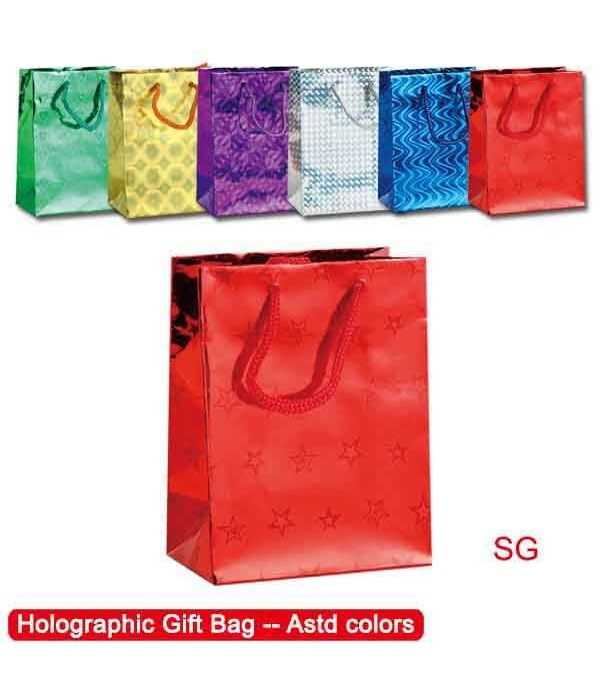 "holo.bag 19.5x29x7""/SG 48s"