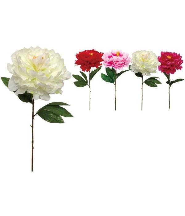 "25""L flower(6.5x4"") 72s"