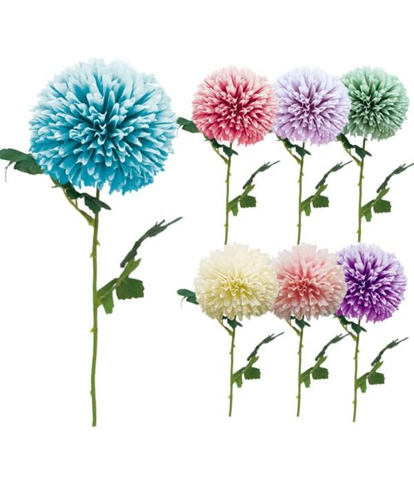 flower astd clrs 72s