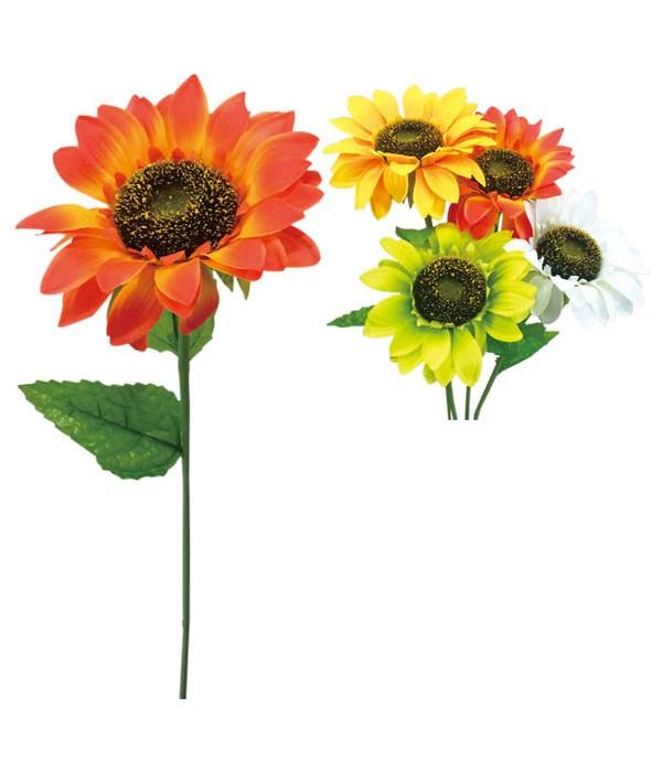 "sunflower 6x25""h/72s"