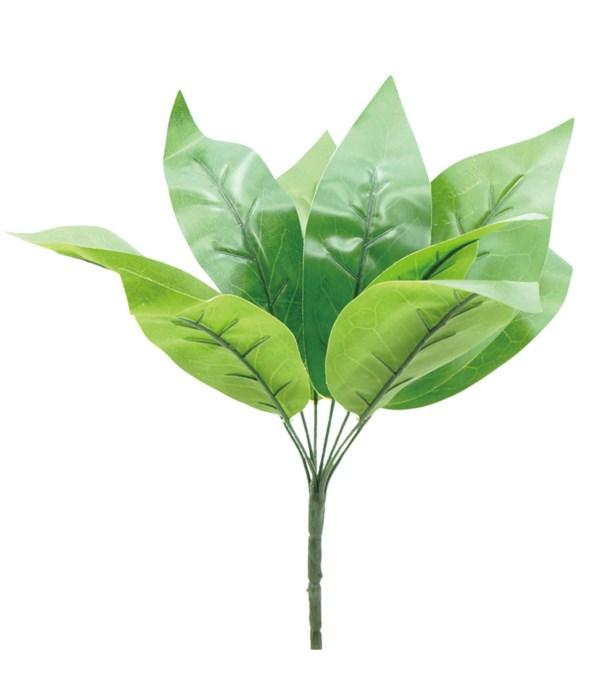 "16""/12-stem green plant 72s"