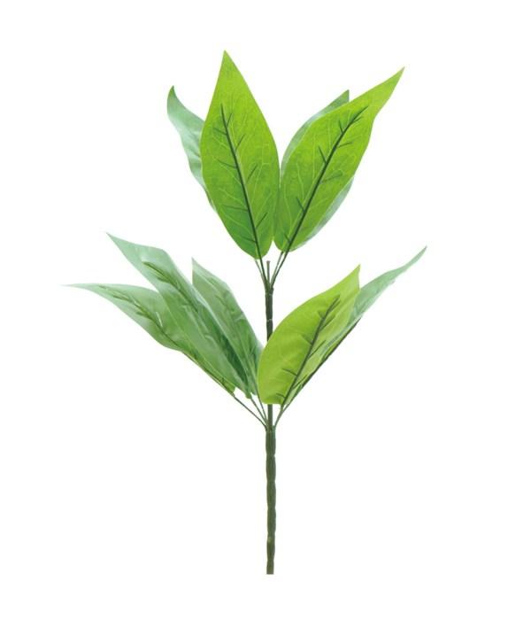 "23""/12-stem green plant 72s"