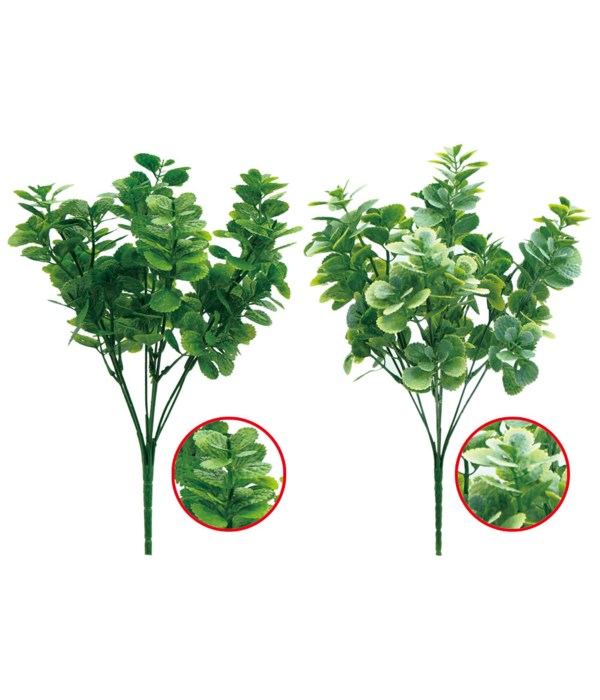 "12""/5-stem green plant 72s"