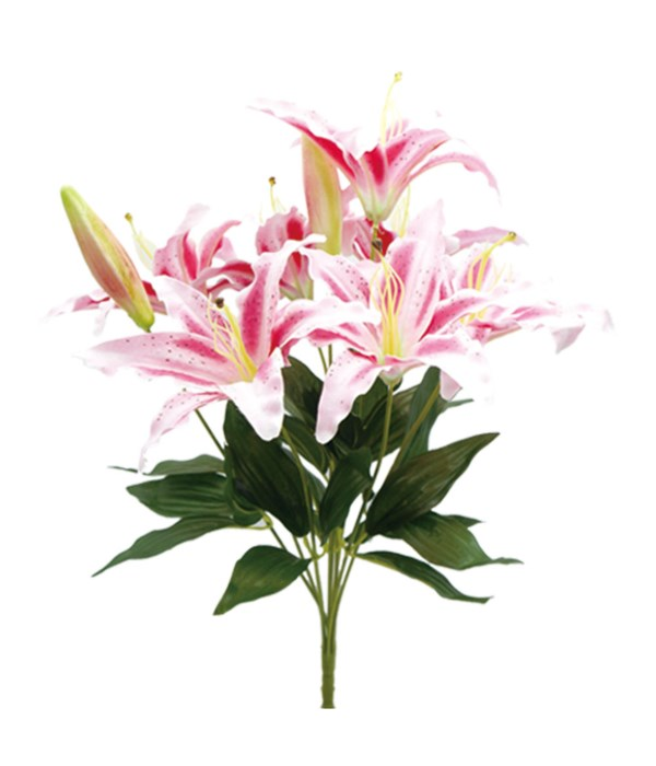 """23"""" 9-heads lily pink 30/90"""