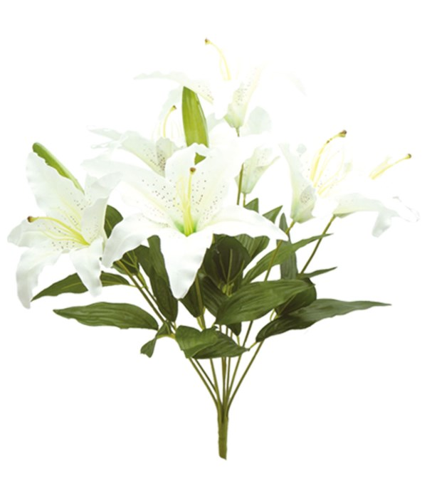 """23"""" 9-heads lily white 30/90"""