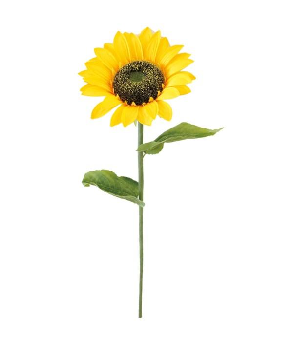 "sunflower 10x37.5""h 24/96s"