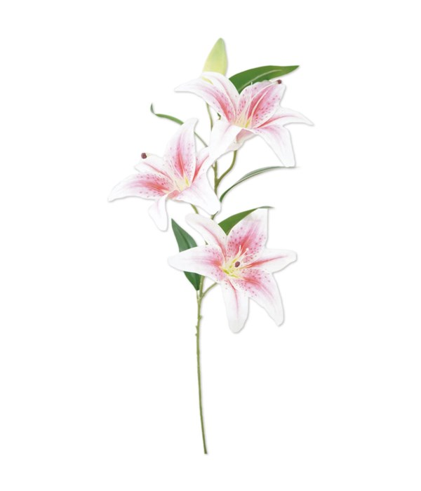 """41"""" tiger lily pink 24/96s"""