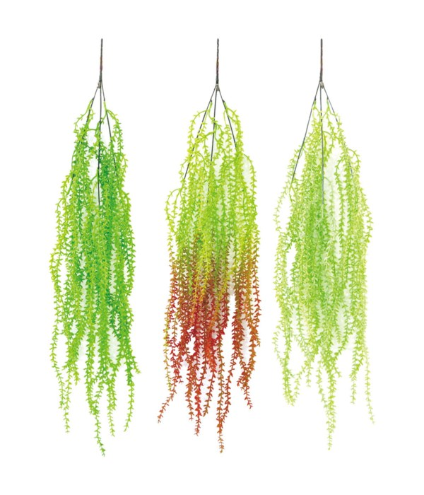 """30"""" leaf vine 24/600s"""