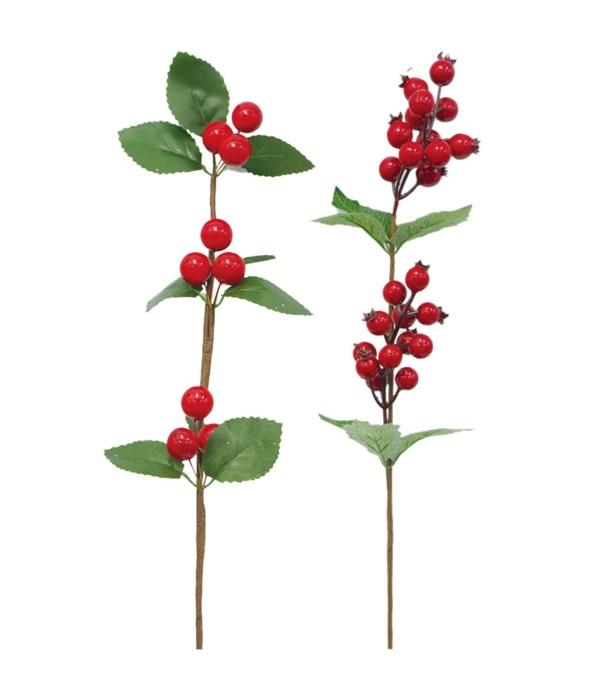 """21"""" x'mas stem w/berry 48/144s"""