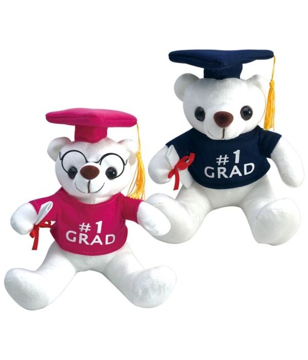 "9"" graduation bear 24s"