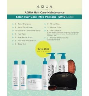 Aqua Salon Hair Care Intro Package