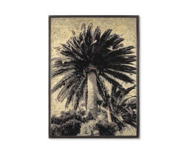 Venice Palm Trees - Gold Leaf