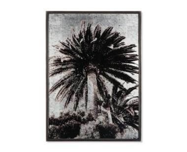 Venice  Palm Trees -  Siver Leaf