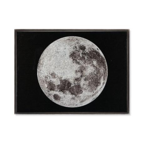 Silver Leaf - Moon