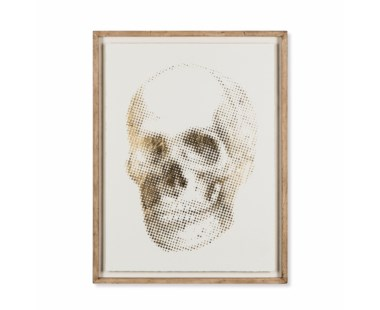 Gold Skeleton - Skull