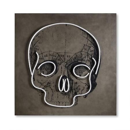 LED Neon Skull