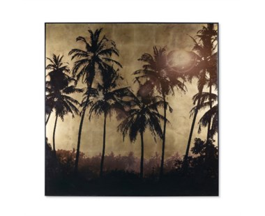 Gold Leaf Palm Tree Grove