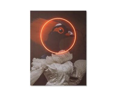 LED Neon Pheasant Portrait