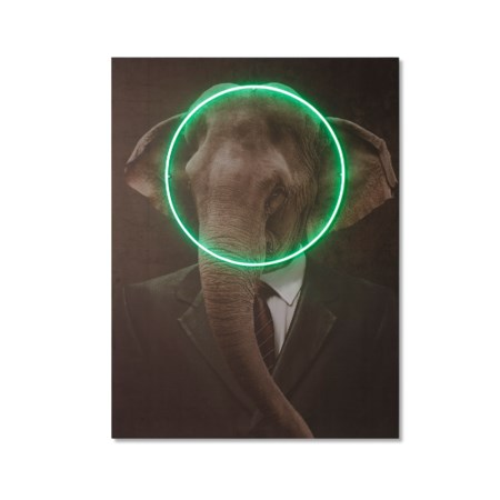 LED Neon Elephant Portrait