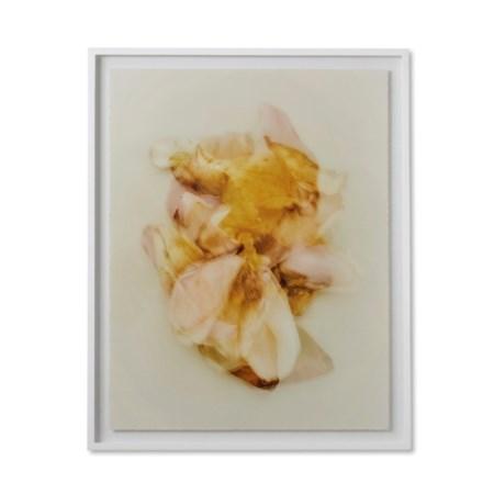 Reagan Hayes Floral - A