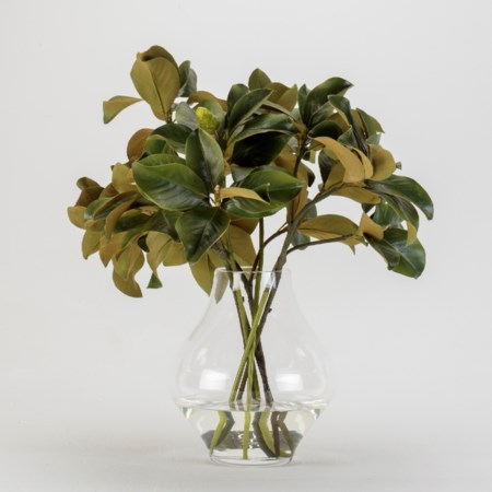 Magnolia Leaves in York Vase