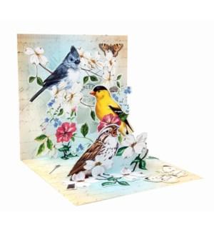 Garden Bird Trio
