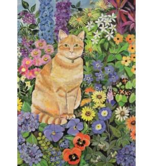 Gordon'S Cat