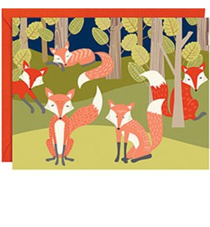 Foxes In Forest A2 Note (10Pk)