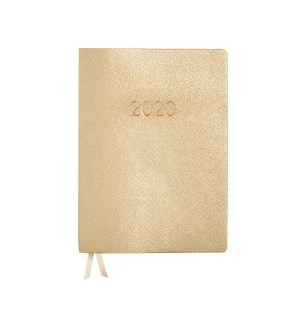"""2019-2020 PS Planner Gold Large 7"""" x 9"""""""