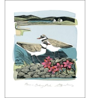 Plovers and Orkney Pinks|Art Angels