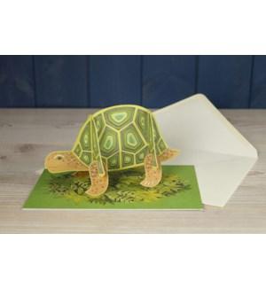 Popout Tortoise Art Angels
