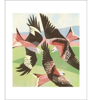 Red Kites Laurieston|Art Angels
