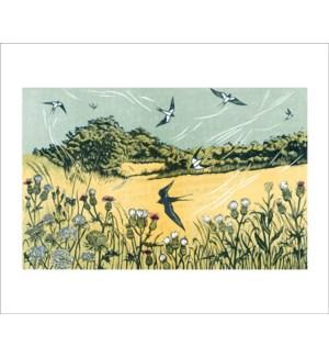 Bayfield Swallows|Art Angels