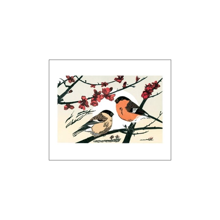 Bullfinches Art Angels